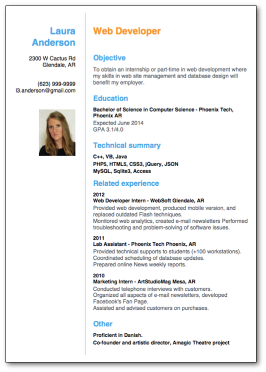 top 10 professional resume templates 4  10